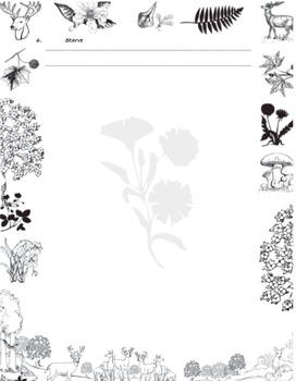 3rd grade, Theme 4 - Animal Habitats Vocabulary Quizzes