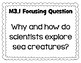 Wit & Wisdom Essential Question and Focusing Question Posters