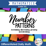 Patterning: Differentiated Daily Math for Ontario 3-6