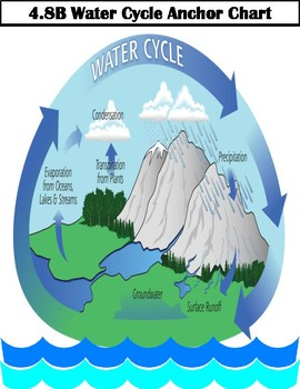 4th grade water cycle diagram wiring 4 8b water cycle anchor chart by debra mills teachers pay teachers 3d water cycle diagram 4th grade 4th grade water cycle diagram ccuart Gallery