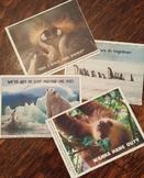4 Animal Valentine Cards I