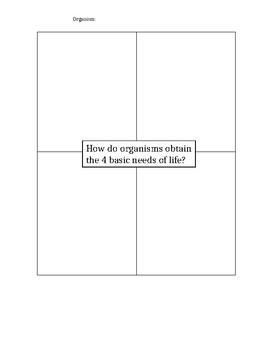 4 Basic Needs of Life