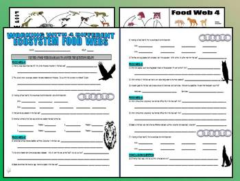 4 Food Webs Question Sheet (Animals Ecosystems)