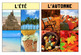 4 French Four Seasons / Les Quatre Saisons Posters
