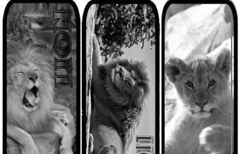 4 Fun Lion Bookmarks