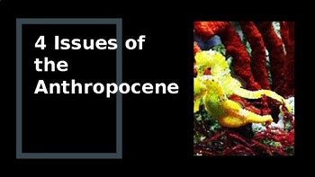 4 Issues of the Anthropocene