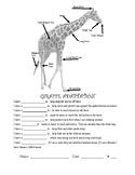 4.LS1.A Animal/Plant Adaptation Worksheet & Answer Keys