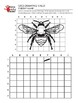 4 Pack Insect Grid Drawing Worksheet for Middle/High Grades