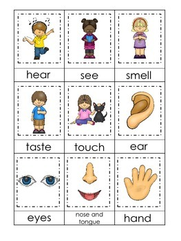 4 Printable Learn the 5 Senses Matching Preschool Learning Games.