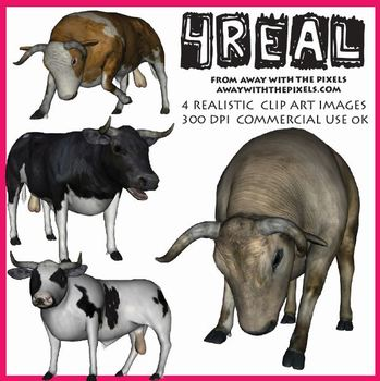 4 Real! 4 Realistic Bull Clip Art Images - Large High Quality Images