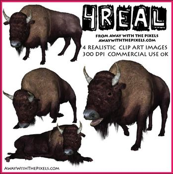 4 Real! 4 Realistic Bison Clip Art Images from Away With The Pixels
