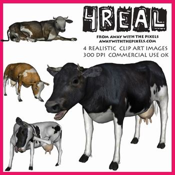 4 Real! 4 Realistic Cow Clip Art Images from Away With The Pixels