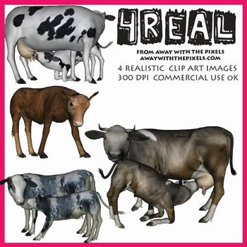 Realistic Farm Animal Clip Art - 4 Realistic Cow and Calf Clip Art Images