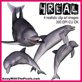 4 Real! 4 Realistic Dolphin Clip Art Images - Large High Q