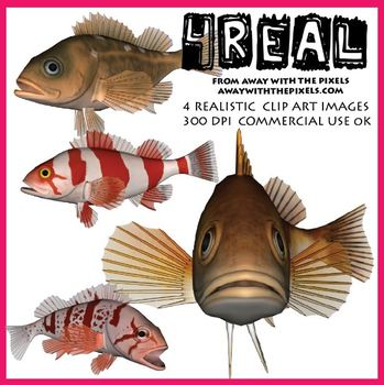 4 Real! 4 Realistic Fish Clip Art Images from Away With The Pixels