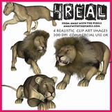4 Real! 4 Realistic Lion Clip Art Images - Large High Qual