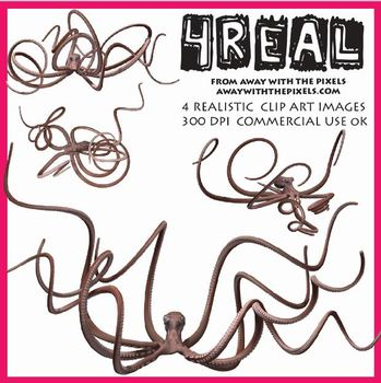 4 Real! 4 Realistic Octopus Clip Art Images - Large High Quality Images