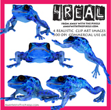 4 Real! 4 Realistic Poison Dark Frog Clip Art Images - Poison Dart Frog Clipart
