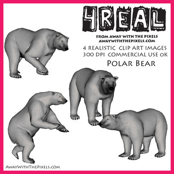 4 Real! 4 Realistic Polar Bear Clip Art Images