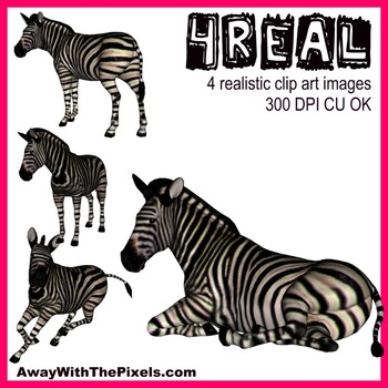 4 Real! 4 Realistic Zebra Clip Art Images - From Away With The Pixels