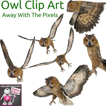 4 Real! Realistic Owl Clip Art Images