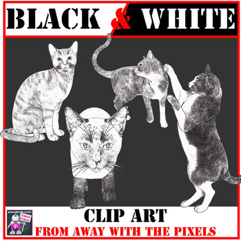 4 Realistic Black and White Cat Clip Art Images $1