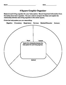 4 Square Body Systems Organizer