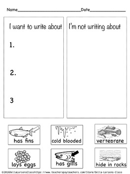 4 Square Writing Salmon for Kindergarten
