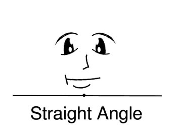 4 Types of Angles Posters