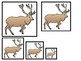 4 Utah State Symbols themed Size Sequence Preschool Learning Games.