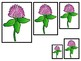 4 Vermont State Symbols themed Size Sequence Preschool Learning Games.