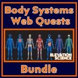 4 Webquests:  Digestive, Urinary, Immune & Circulatory Systems (Google Docs)