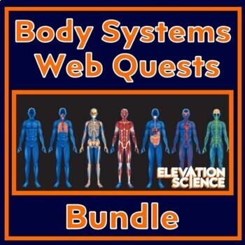 4 Webquests BUNDLED:  Digestive, Urinary, Immune and Circu