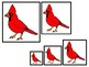 4 West Virginia State Symbols themed Size Sequence Preschool Learning Games.