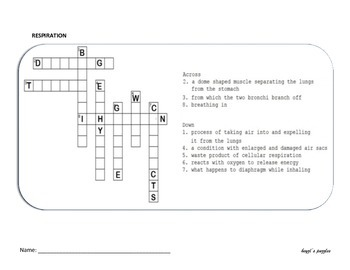 4 in 1 Human respiration  mind maps, double puzzles and crossword puzzles