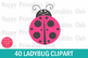 40 Lady Bug Clipart- Cute Lady Bug Clipart-Ladybug Graphics