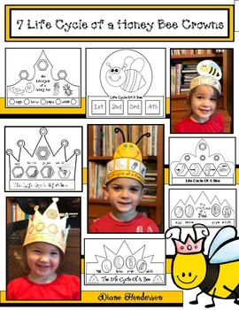 7 Life Cycle of a Bee Crafty Crowns