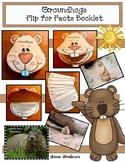 Groundhog Activities: Non-Fiction Booklet, Activities & Photo-Posters