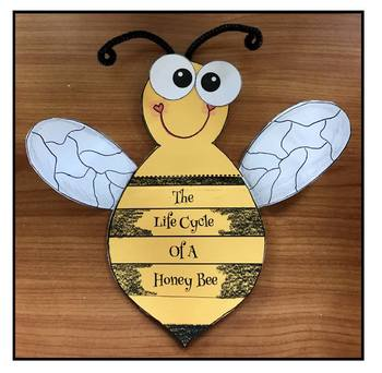 """Bee Activities: Life Cycle Of A Honey Bee: """"Bottoms Up!"""" Booklet Craft"""
