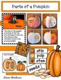 """Parts of a Pumpkin"" Activities"