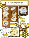 Bee Activities Life Cycle Of A Honey Bee Hexagon Bee Craft