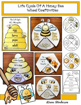 Life Cycle of a Honey Bee Wheel Craftivities