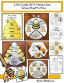 Life Cycle of a Honey Bee: Craft Wheels