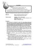 4115-1 Causes of World War II Card Sort