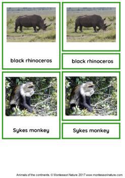 45 Animals Of Africa Montessori Cards