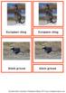 45 Animals Of Europe – Montessori Nomenclature And Informa