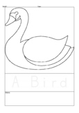47 Animals Outline, coloring pages, Animal Classification
