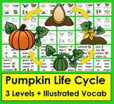 Pumpkin Life Cycle Readers - 3 Reading Levels + Illustrate