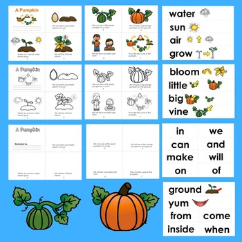 Pumpkins Life Cycle Readers - 3 Reading Levels + Illustrated Word Wall