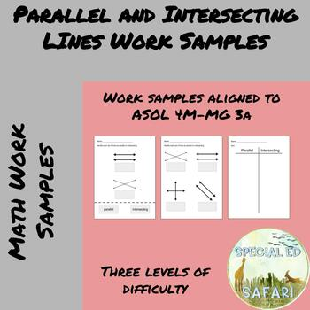 4M-MG 3a Parallel and Intersecting Lines Work Samples- VAAP and SPED!!!